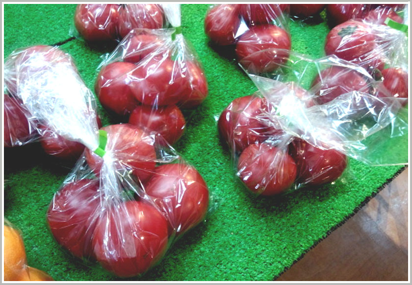 安井さんのトマト大