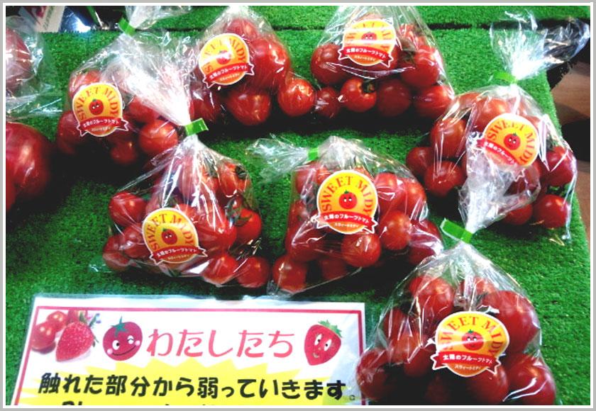 安井さんのトマト